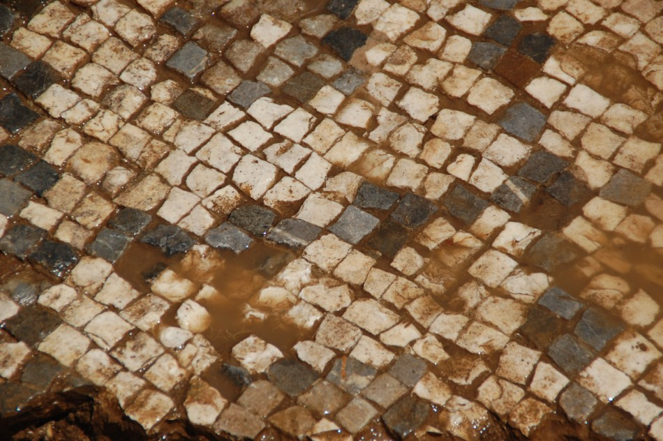 A detailed photograph of the tesserae, or tiles, that make up the massive Roman mosaic. (Photo: University of Nebraska-Lincoln)