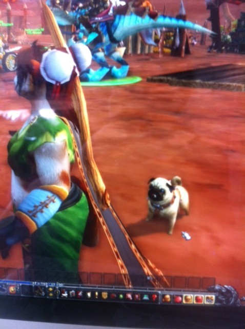 World of Warcraft Mists of Pandaria Pug