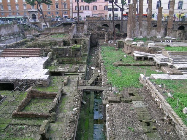 Archaeological area of ​​Torre Argentina in Rome where researchers claim to have found the exact site where Roman general Julius Caesar was stabbed to death in 44 BC. (Photo:Antonio Monterroso/CSIC)