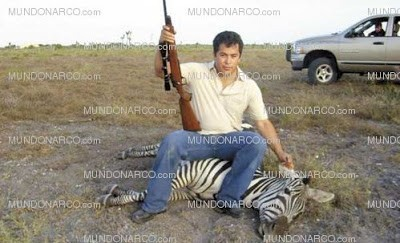 Lazcano on his zebra