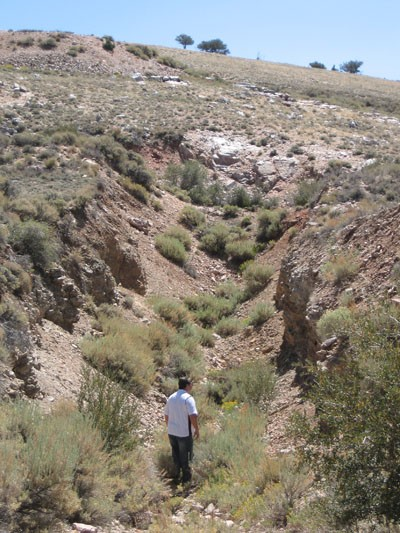 Trench on Tertiary Minerals' Nevada MB project (Photo: Tertiary Minerals)