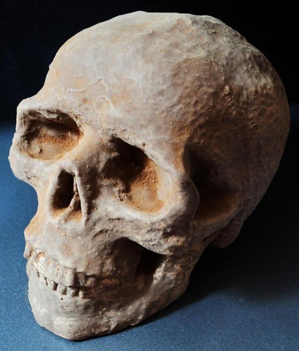 Milk chocolate skull