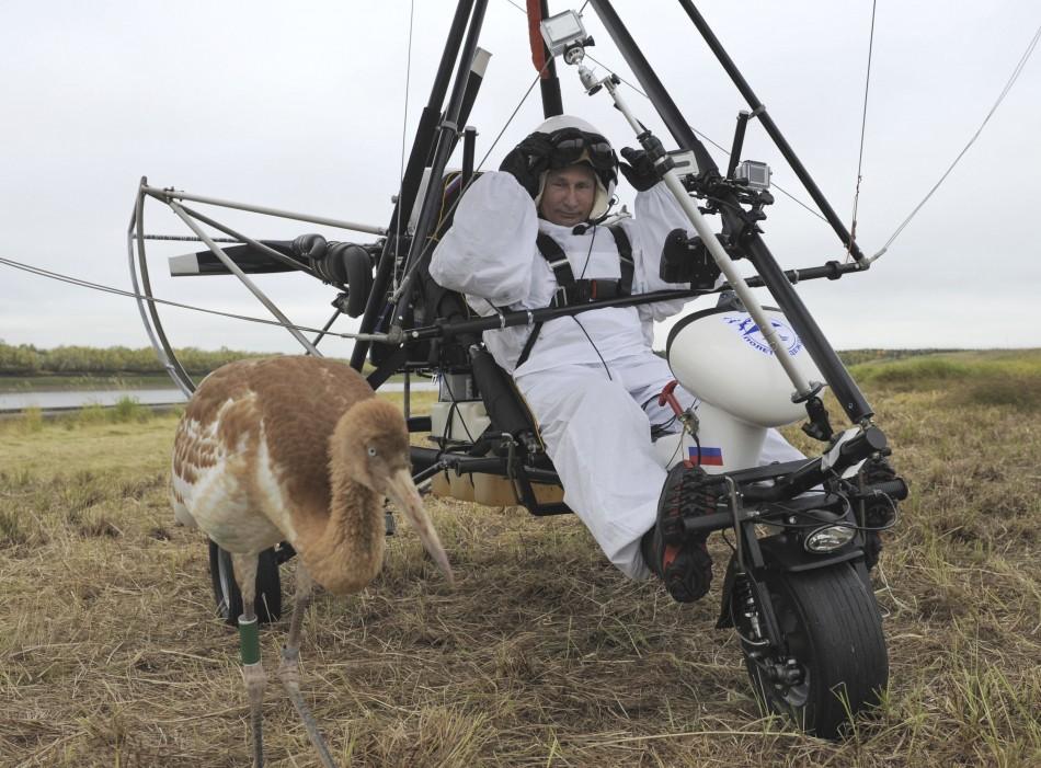 Putin crane