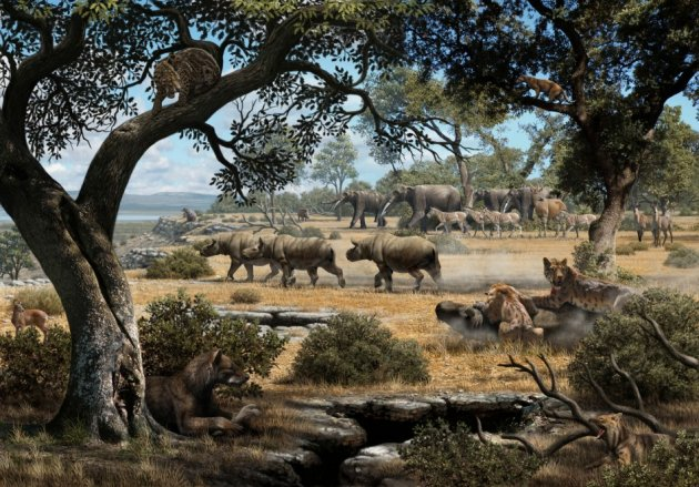 Spain nine million years ago