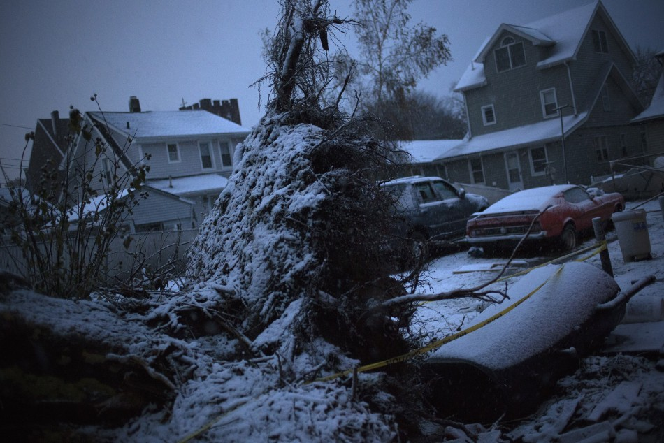 Snow covers fallen tree in a neighborhood which was left destroyed by Hurricane Sandy in the Staten Island borough of New York