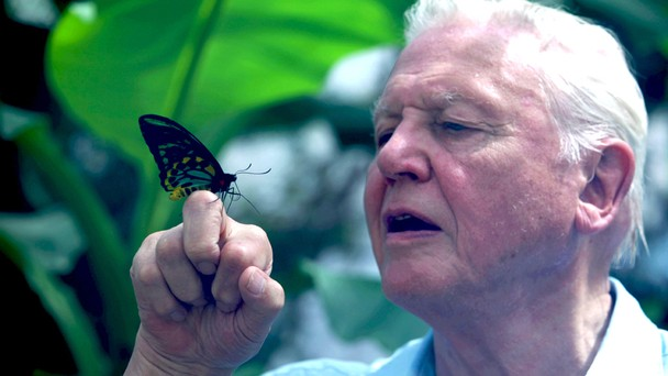 Attenborough's Ark: Natural World Special