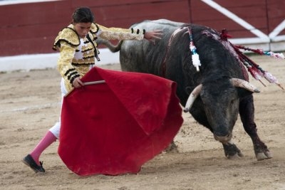 Mexican matador Michelito Lagravere performs a pass to a bull during a bullfight at the Plaza Monumental bullring in Merida