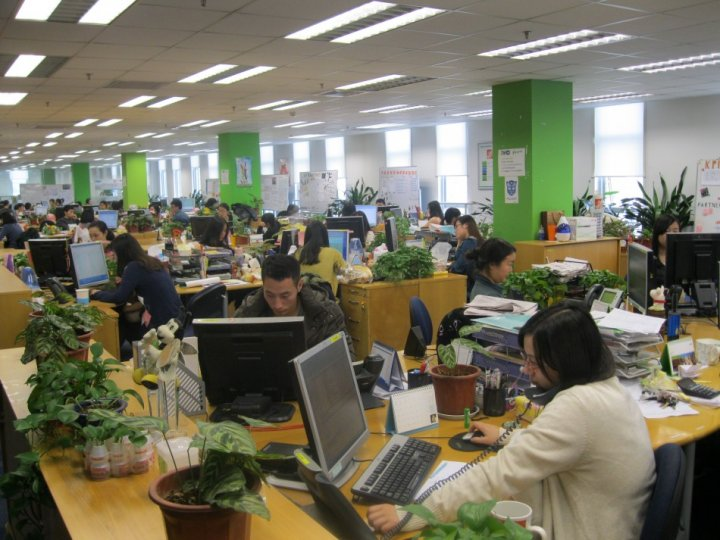Damco head office in Chengdu has a young demographic (Photo: Lianna Brinded)