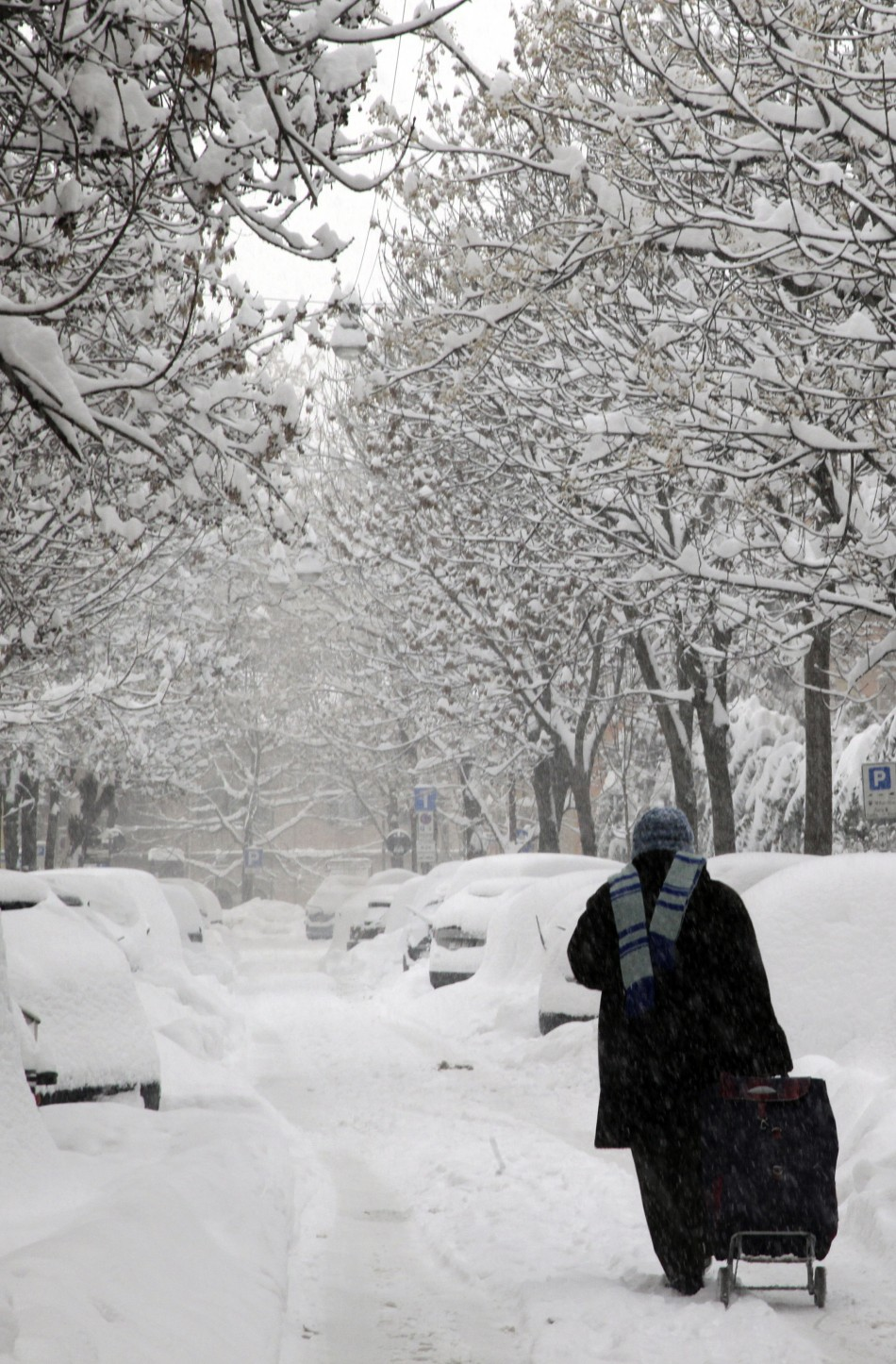 Siberia Winter Cold Plunges to Minus 55 - But UK Safe