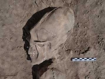 Alien-Like' Skulls Excavated in Mexico