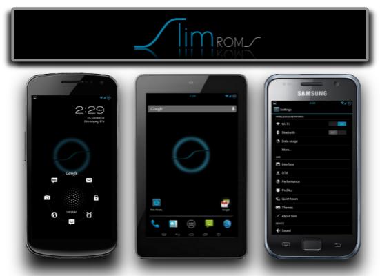 Nexus S GT I9020