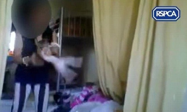 Girl holds kitten during torture