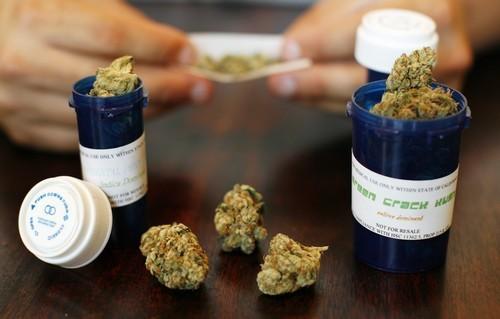 Marijuana: Italian Army to Grow Cannabis for Medical Purposes