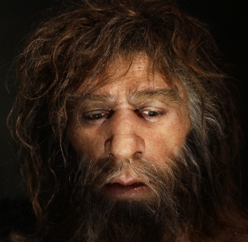 Neanderthals became extinct around 33,000 years ago (Reuters)