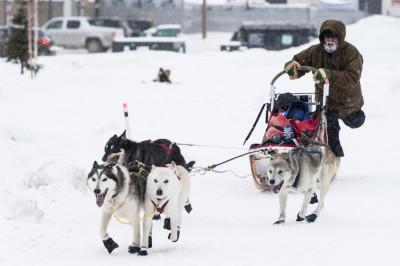 30th Yukon International Dog Sled Race