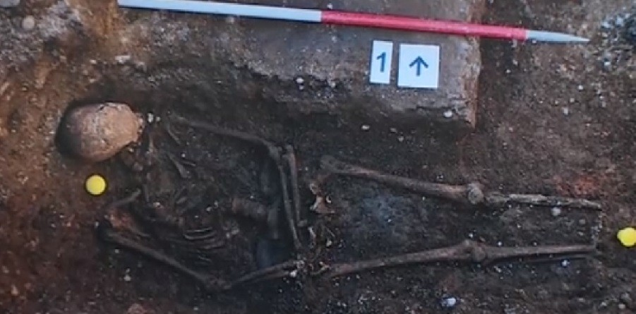 The skeleton found by archaeologists at Grey Friars on 12 September (University of Leicester)