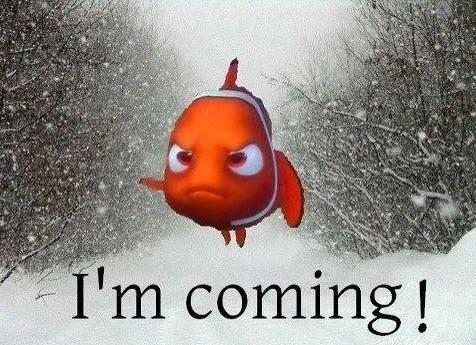 Blizzard Nemo to Cripple New York and US East Coast