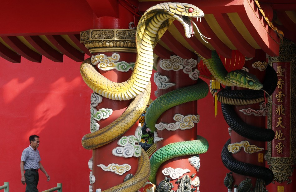 Chinese New Year 2013: Year of Snake Follows the Dragon