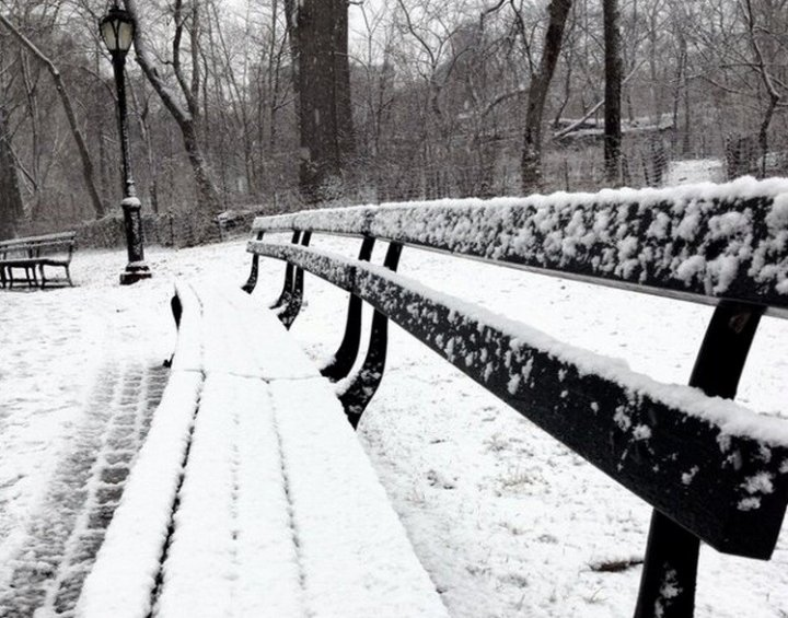 Central Park NYC under snow PIC: @thomasdenman