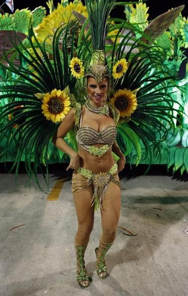 Rio Carnival 2013 Last Day Celebration Pictures