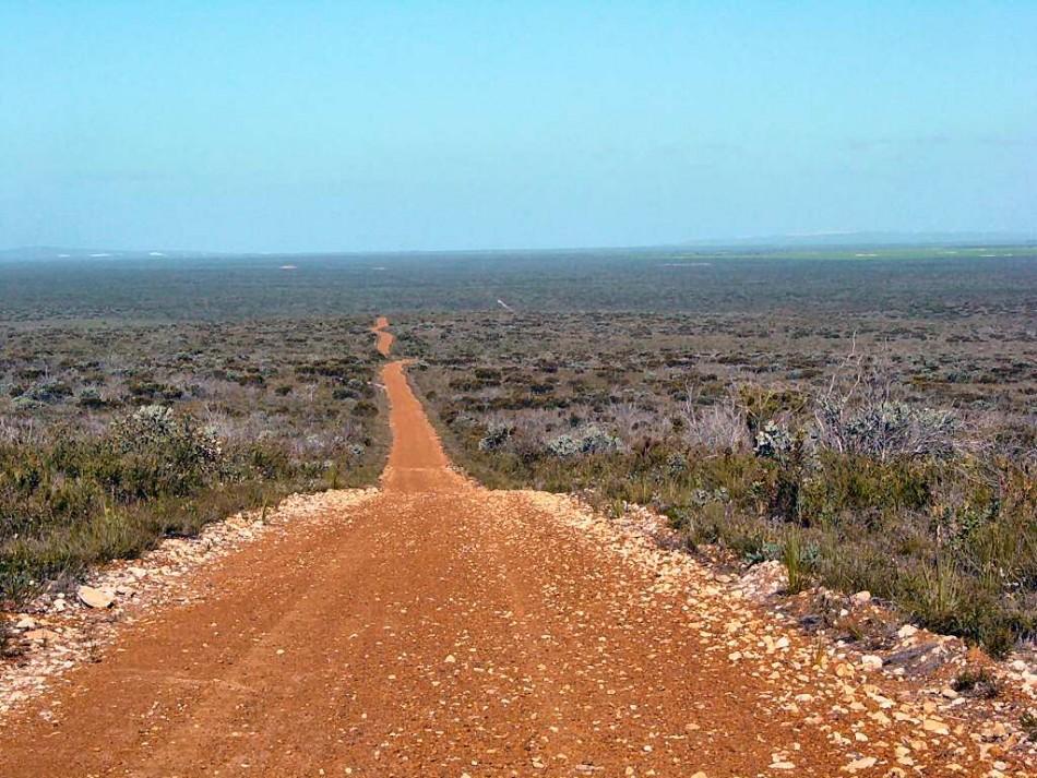 The Australian outback (Wikipedia)