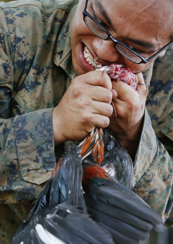 US Marines Drink Blood of Cobra