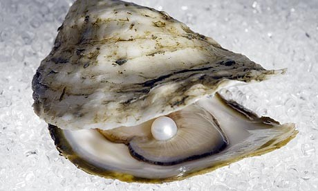 Seafood-Lover James Humphries Finds 'Priceless' Pearl in ...