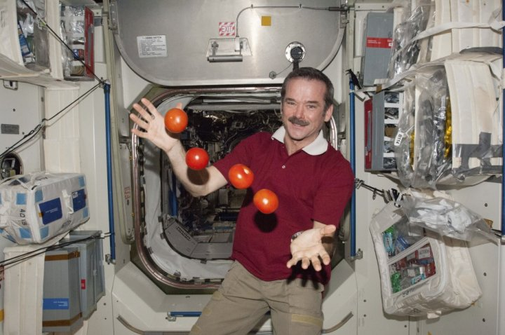 Chris Hadfield at work on the International Space Station