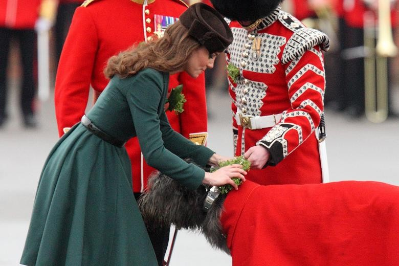 Kate present the Irish guard's mascot Domhnall with a shamrock at last year's event