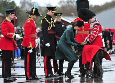 Britains Catherine, Duchess of Cambridge presents shamrock to the mascot of the 1st Battalion Irish Guards, an Irish wolfhound called Domhnall, as she attends a St Patricks Day Parade at Mons Barracks in Aldershot, southern England March 17, 2