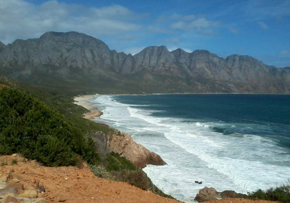 South Africa Whale Coast