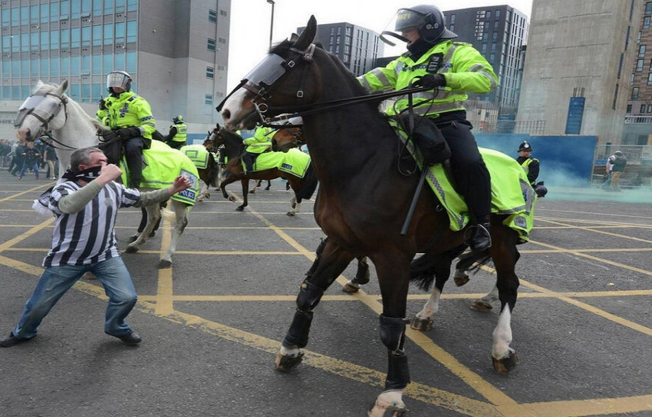 Neigh way: Masked fan squares up to horse