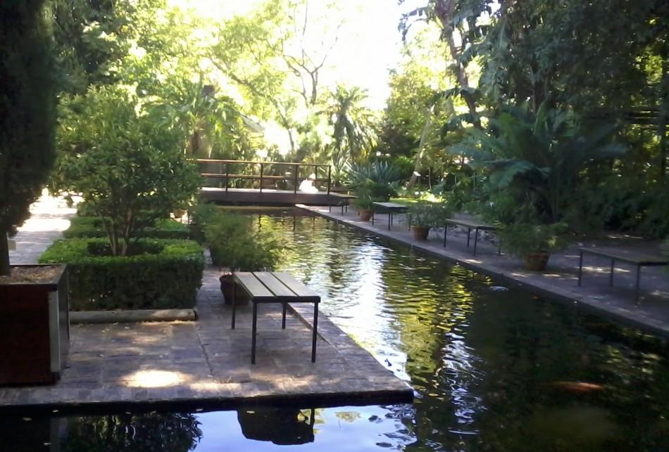 Stellenbosch's botanical gardens