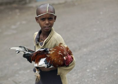 An Orthodox Christian boy holds a chicken for sale at a market ahead of Orthodox Easter in Lalibela May 4, 2013.
