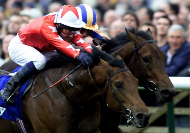 Race for the line at Newmarket