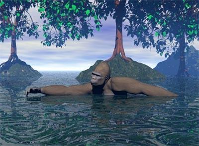 Aquatic ape theory