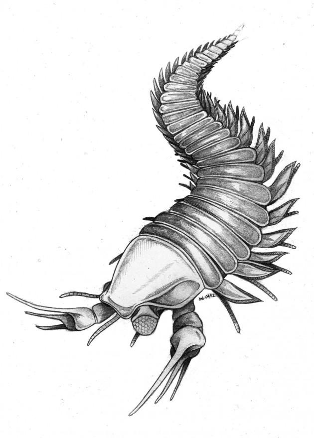 Kootenichela