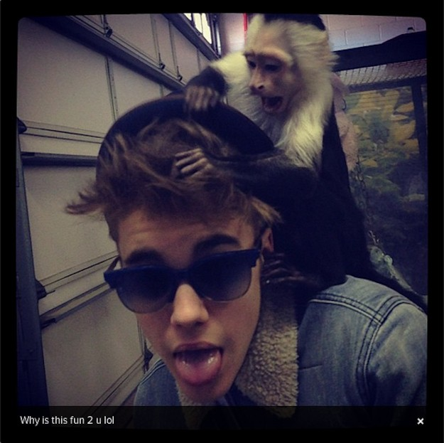Justin Bieber faces bill for monkey's upkeep in Germany