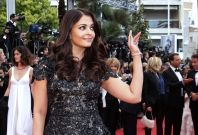 Bollywood Actors on Cannes Film Festival 2013 Red Carpet