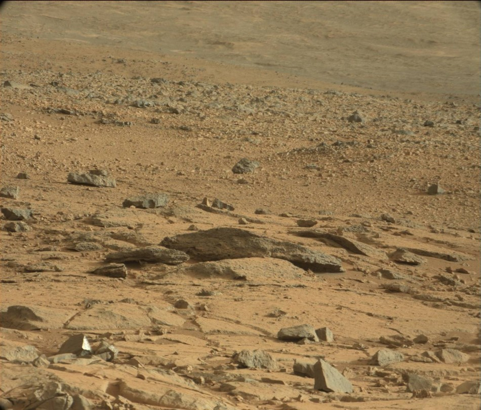 Where is the Mars Rat? [Image Courtesy: NASA/JPL-Caltech/MSSS]