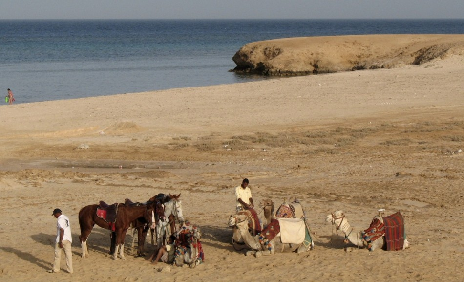 Unlikely scene for a drugs bust: Marsa Alam