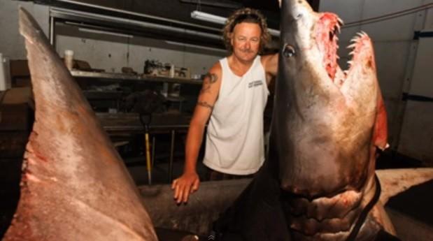 East Coast Diesel >> Monster Shark Caught off California Coast: Mako Weighed 1 ...