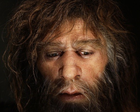 The research shows at least one Neanderthal suffered a cancer that is common in modern-day humans (Reuters)