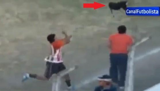 Dog in space: Bella Vista player Jimenez hurls hound in the air