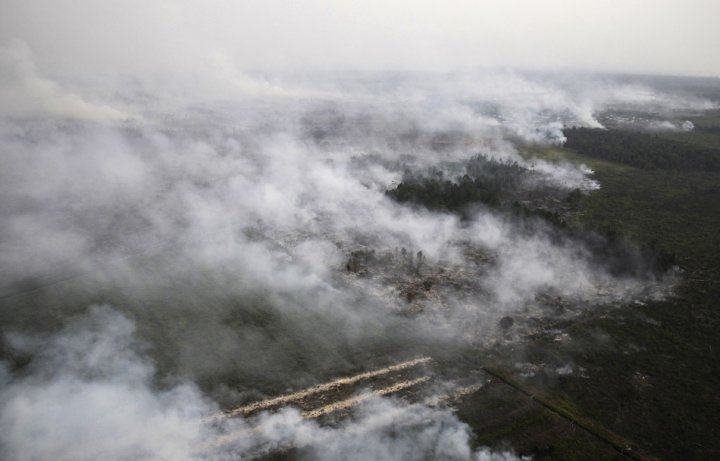 An aerial view of burning lands in Palalawan district in Riau province (Reuters)
