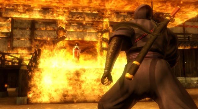 Ninja Gaiden Sigma Plus (Courtesy: teamninja-studio.com)