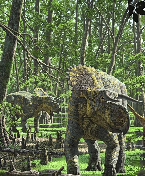 Nasutoceratops titus