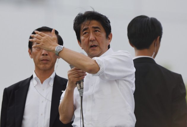 Japan upper house elections
