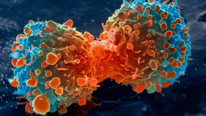 cancer research uk gamegene