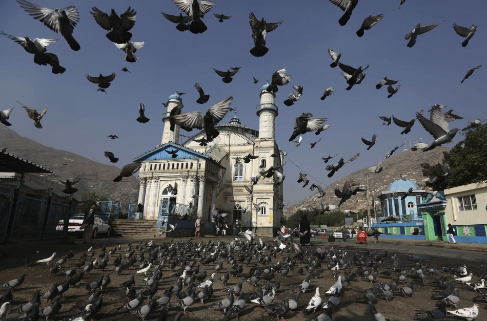 Pigeons fly outside the Shah-e Doh Shamshira mosque as Afghans head for morning prayers on Eid-al-Fitr in Kabul, Afghanistan, August 8, 2013. (Photo: REUTERS/Omar Sobhani)